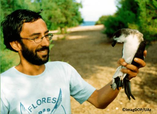 Quanto tempo vivem as aves marinhas?
